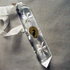 """Waterford Star Prism Ornament 2001 4.75"""" long"""